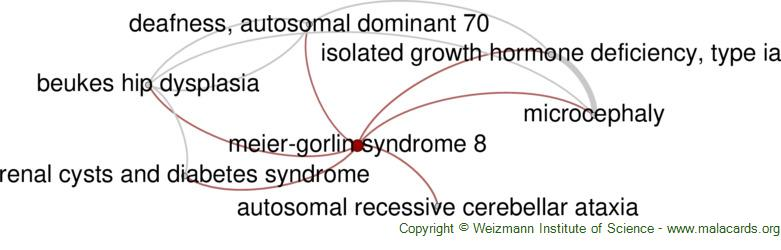 Diseases related to Meier-Gorlin Syndrome 8