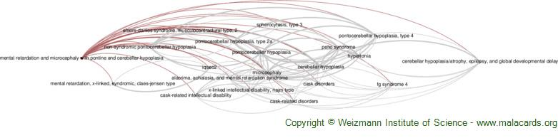Diseases related to Mental Retardation and Microcephaly with Pontine and Cerebellar Hypoplasia
