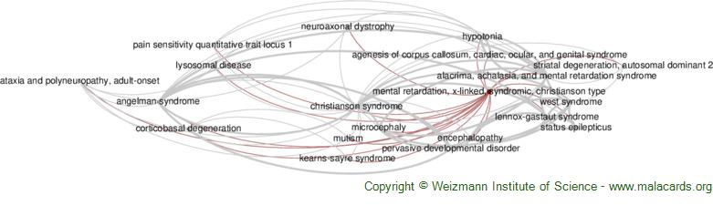 Diseases related to Mental Retardation, X-Linked, Syndromic, Christianson Type