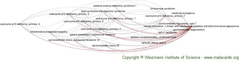 Diseases related to Mental Retardation, X-Linked, with Cerebellar Hypoplasia and Distinctive Facial Appearance