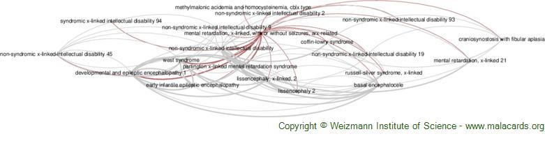 Diseases related to Mental Retardation, X-Linked, with or Without Seizures, Arx-Related