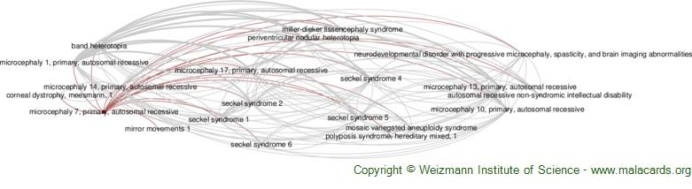 Diseases related to Microcephaly 7, Primary, Autosomal Recessive