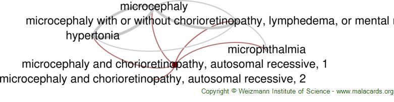 Diseases related to Microcephaly and Chorioretinopathy, Autosomal Recessive, 1