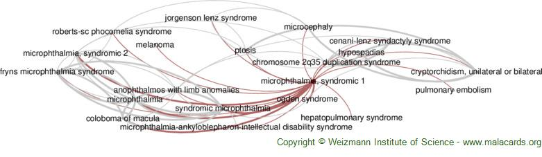 Diseases related to Microphthalmia, Syndromic 1