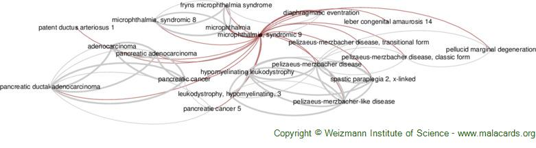 Diseases related to Microphthalmia, Syndromic 9