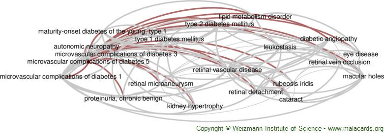 Diseases related to Microvascular Complications of Diabetes 5