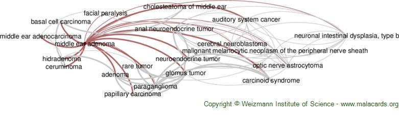 Diseases related to Middle Ear Adenoma