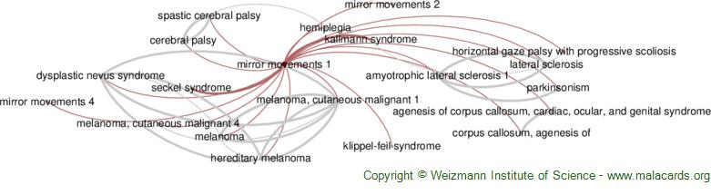 Diseases related to Mirror Movements 1