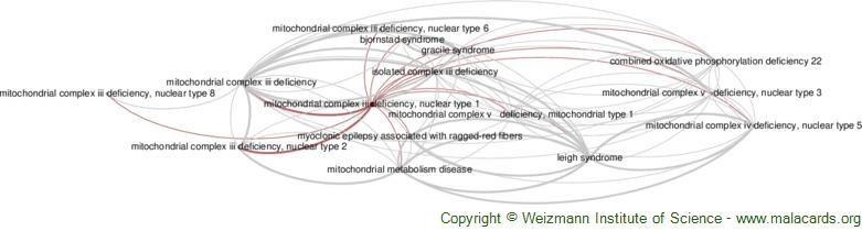 Diseases related to Mitochondrial Complex Iii Deficiency, Nuclear Type 1