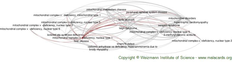 Diseases related to Mitochondrial Complex V   Deficiency, Nuclear Type 1