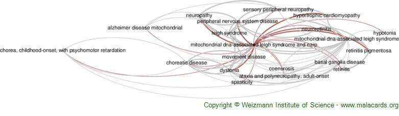 Diseases related to Mitochondrial Dna-Associated Leigh Syndrome and Narp