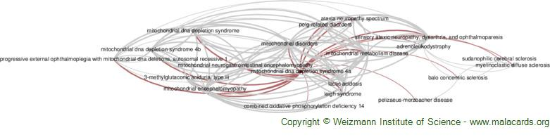 Diseases related to Mitochondrial Dna Depletion Syndrome 4a