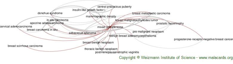 Diseases related to Mixed Cell Adenoma