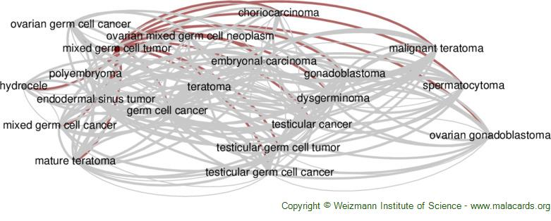 Diseases related to Mixed Germ Cell Tumor