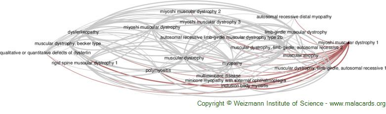 Diseases related to Miyoshi Muscular Dystrophy 1