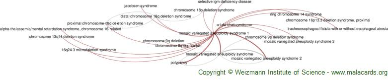 Diseases related to Mosaic Variegated Aneuploidy Syndrome 1