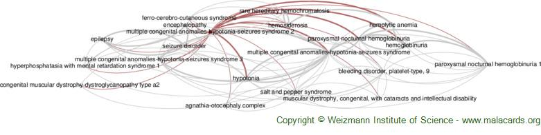 Diseases related to Multiple Congenital Anomalies-Hypotonia-Seizures Syndrome 2