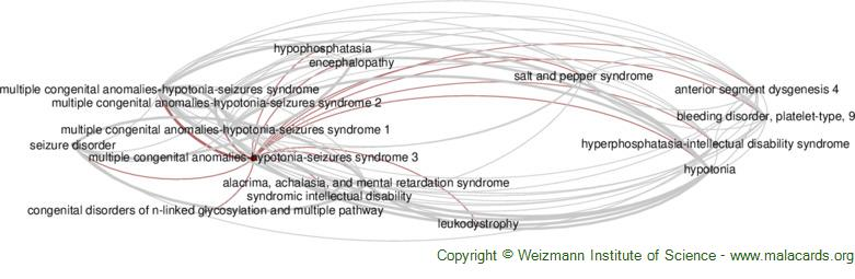 Diseases related to Multiple Congenital Anomalies-Hypotonia-Seizures Syndrome 3
