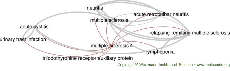 Diseases related to Multiple Sclerosis 4