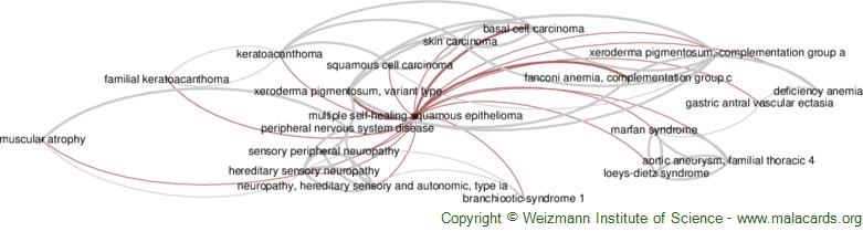 Diseases related to Multiple Self-Healing Squamous Epithelioma