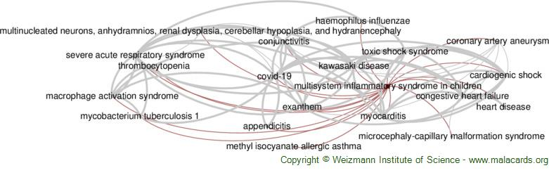 Diseases related to Multisystem Inflammatory Syndrome in Children