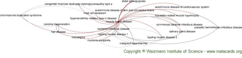 Diseases related to Muscle Tissue Disease