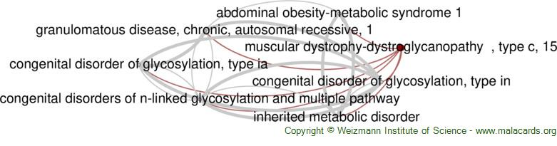 Diseases related to Muscular Dystrophy-Dystroglycanopathy  , Type C, 15