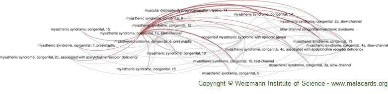 Diseases related to Myasthenic Syndrome, Congenital, 1a, Slow-Channel