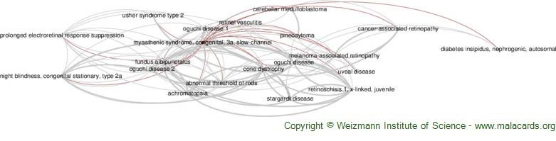 Diseases related to Myasthenic Syndrome, Congenital, 3a, Slow-Channel