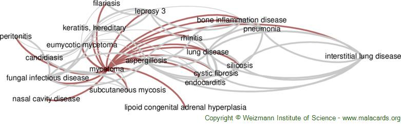 Diseases related to Mycetoma