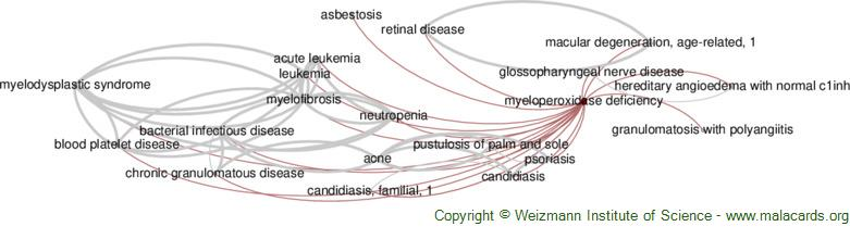 Diseases related to Myeloperoxidase Deficiency