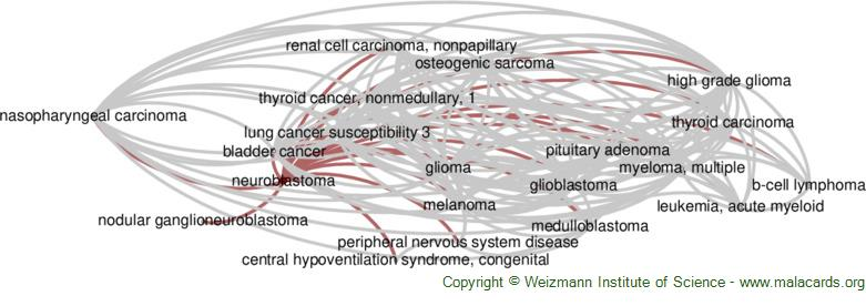 Diseases related to Neuroblastoma