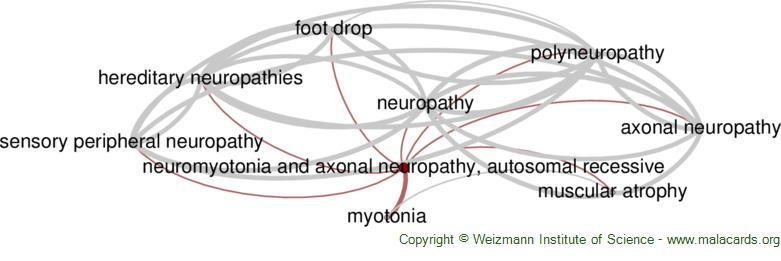 Diseases related to Neuromyotonia and Axonal Neuropathy, Autosomal Recessive