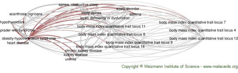 Diseases related to Obesity-Hypoventilation Syndrome