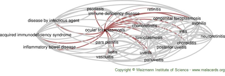 Diseases related to Ocular Toxoplasmosis