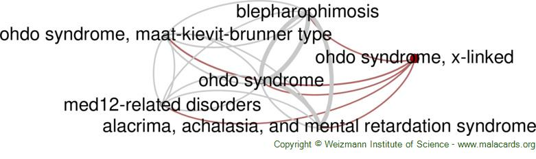 Diseases related to Ohdo Syndrome, X-Linked