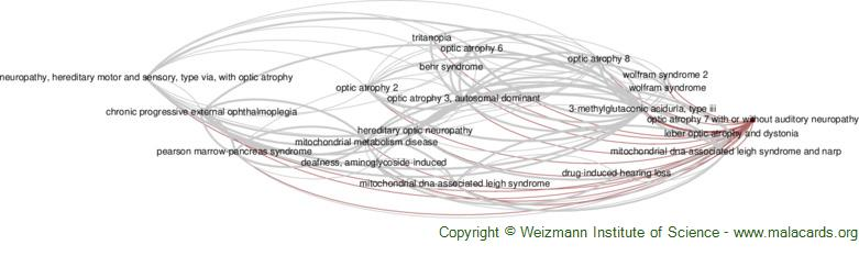 Diseases related to Optic Atrophy 7 with or Without Auditory Neuropathy