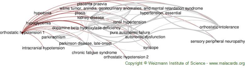 Diseases related to Orthostatic Hypotension 1