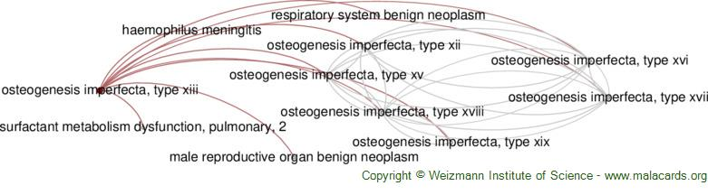 Diseases related to Osteogenesis Imperfecta, Type Xiii