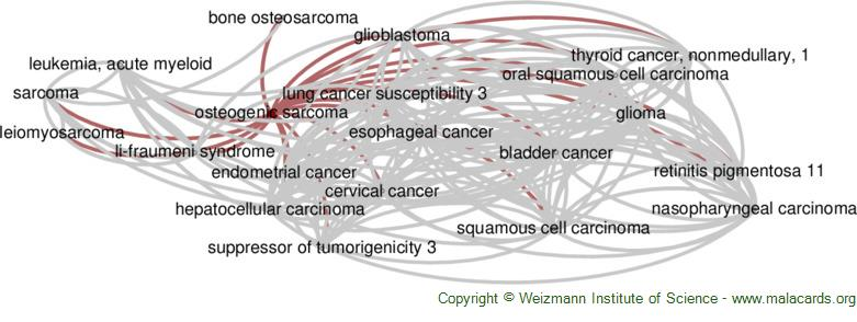 Diseases related to Osteogenic Sarcoma
