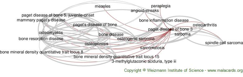 Diseases related to Paget Disease of Bone 3