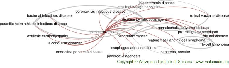 Diseases related to Pancreas Disease