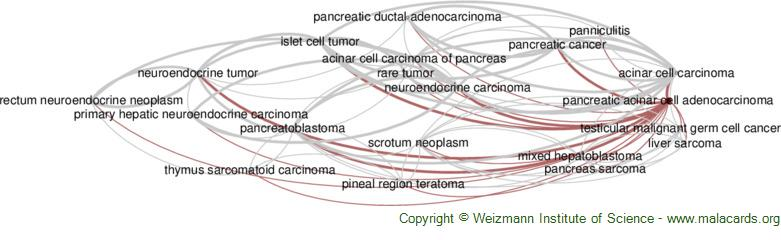 Diseases related to Pancreatic Acinar Cell Adenocarcinoma