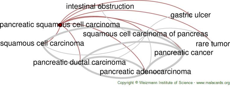 Diseases related to Pancreatic Squamous Cell Carcinoma