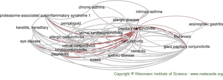 Diseases related to Papillary Conjunctivitis