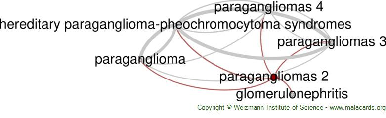 Diseases related to Paragangliomas 2