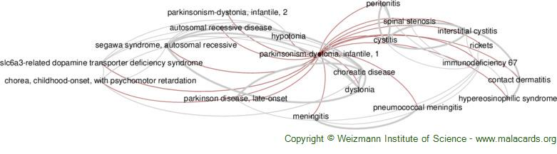 Diseases related to Parkinsonism-Dystonia, Infantile, 1