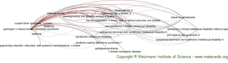 Diseases related to Partington X-Linked Mental Retardation Syndrome