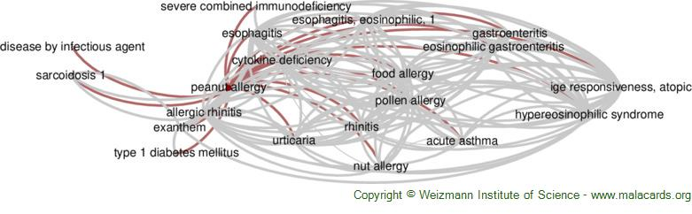 Diseases related to Peanut Allergy