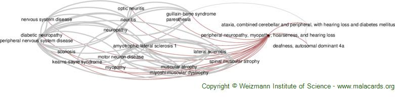 Diseases related to Peripheral Neuropathy, Myopathy, Hoarseness, and Hearing Loss